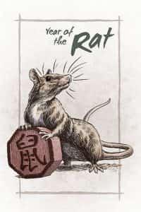 крыса-amorebazi