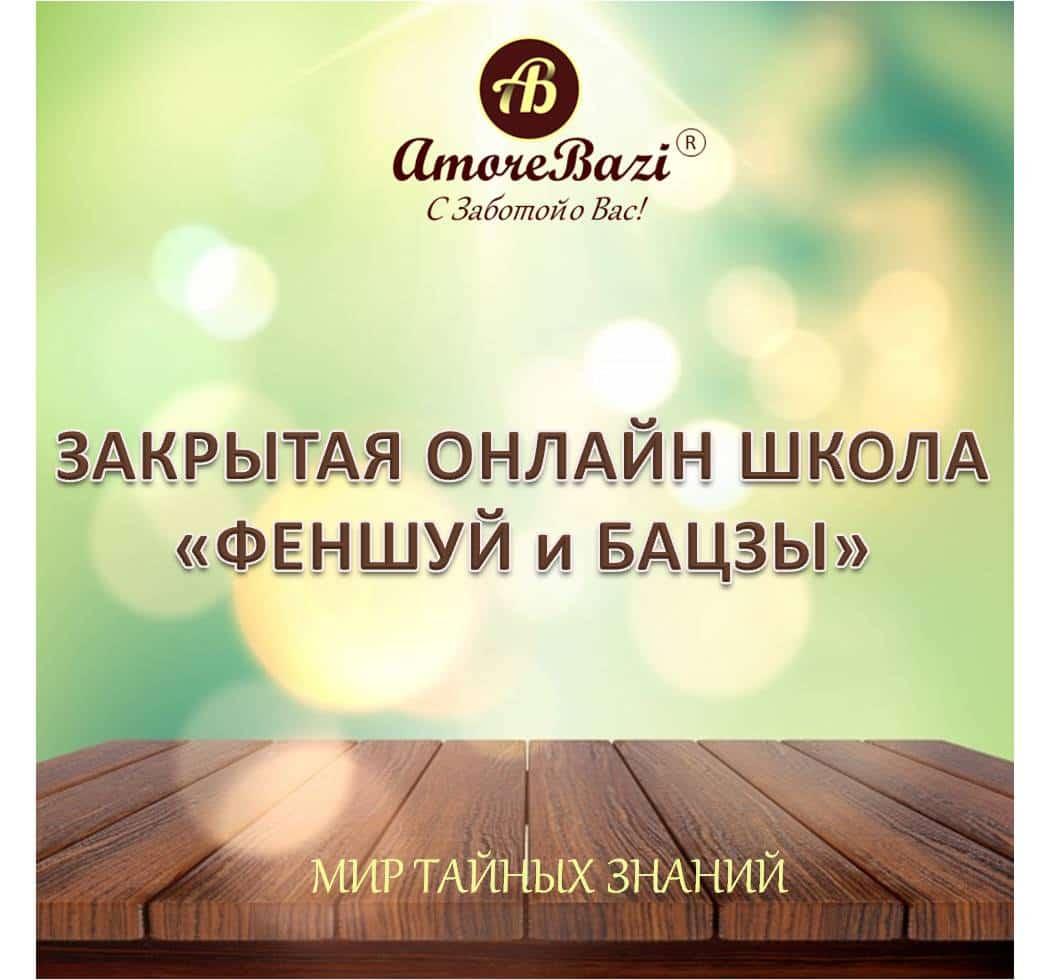 SHCOOL_AMOREBAZI