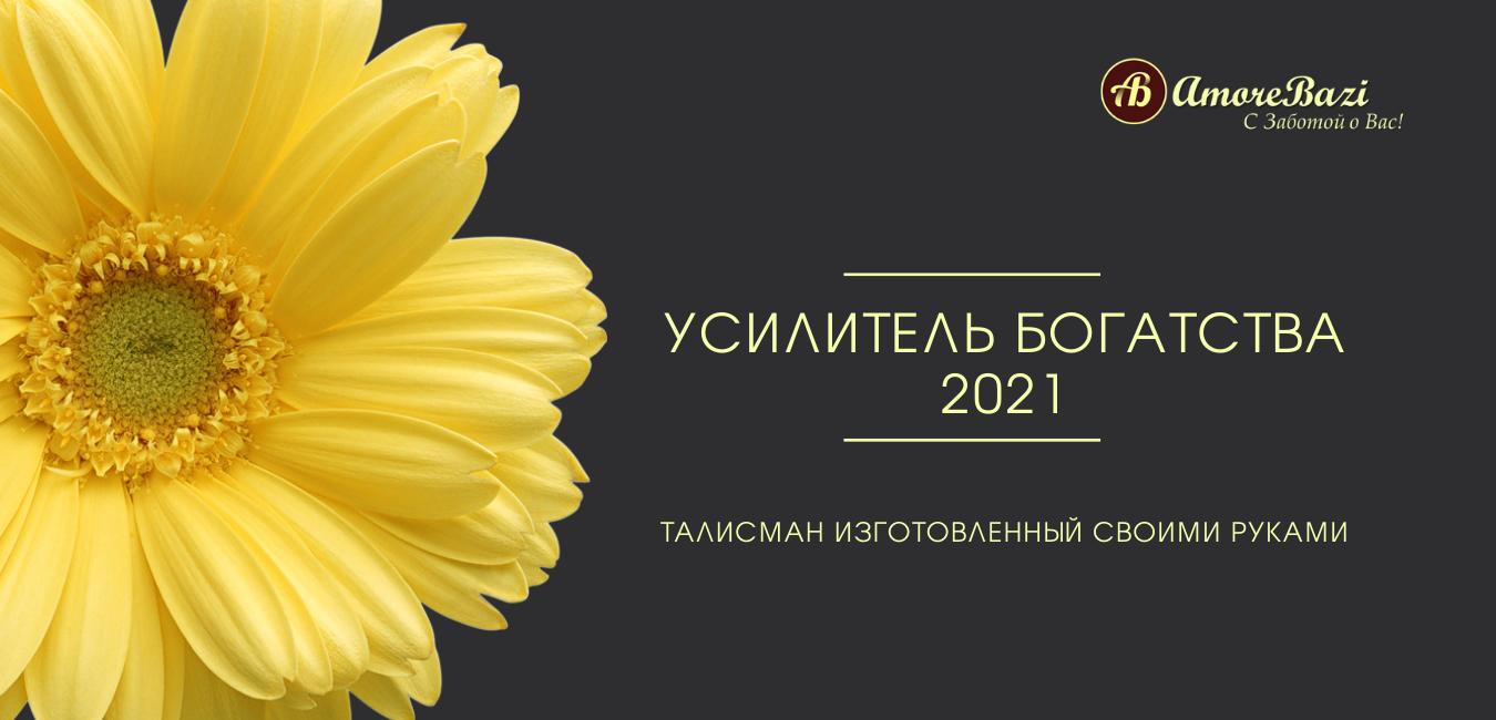 Усилитель богатства 2021